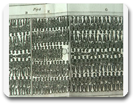 vign1_esclavage2_all